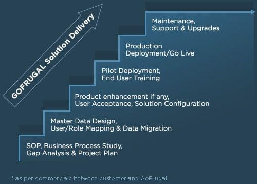 Solution delivery process